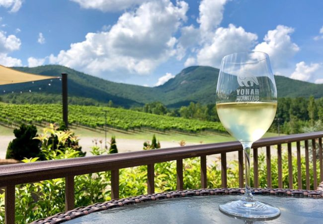 Yonah Mountain Vineyards | @_bellabellini